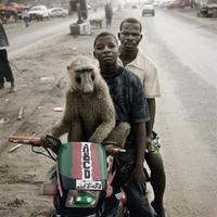 Un lombrik célèbre avec 2 amis africains