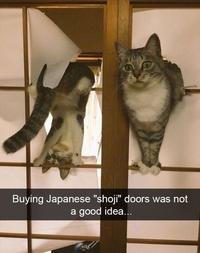 Si vous installez des portes japonaises chez vous