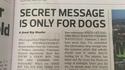 Message secret pour les chiens seulement