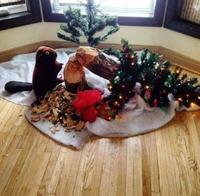 Castor de Noël