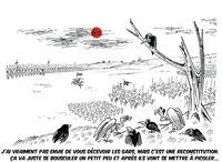 Oiseaux et champ de bataille