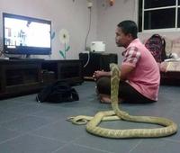 Kan tu regardes la télé avec un pote