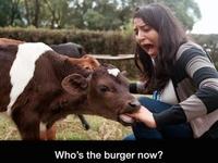 Carnivore (Ça aurait pu être pis)