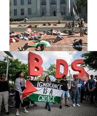 Lobby pro-palestinien à l'Université de Berkeley