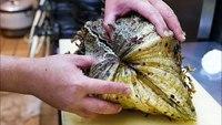 L'art de la préparation d'un coquillage géant