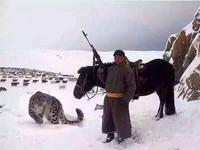 Pendant ce temps en Mongolie