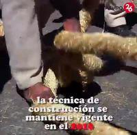 Construction d'un pont de singe au Pérou