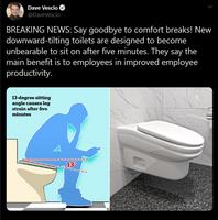 Fini la glande aux toilettes