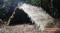 Construction d'une hutte