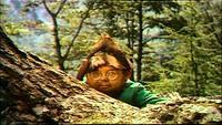 Nainportequi se promène dans la forêt