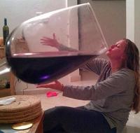 Kan ta femme veut que tu réduise ta consommation à un verre par jour