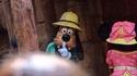 Attention ! Mickey est rentré