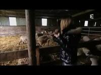 Strip-tease : Berger cherche bergère