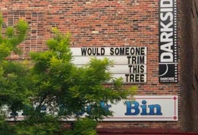 """""""Quelqu'un pourrait-il tailler cet arbre ?"""""""