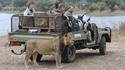 Safari en toute sécurité
