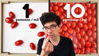 Vous êtes une tomate!