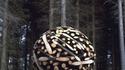 Sphère de bois géante par Lee Jae Hyo