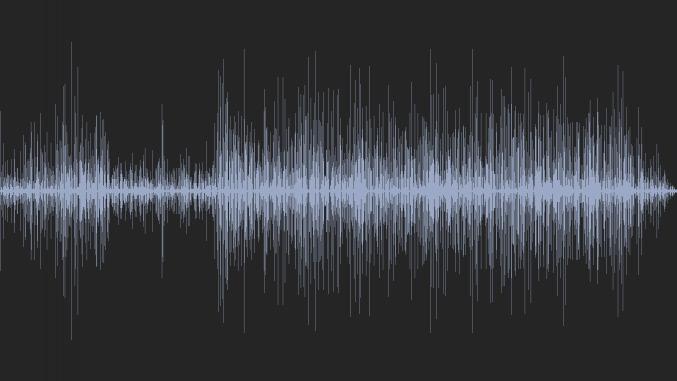 Remix De La Chanson Du Poireau