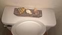 Dans les toilettes de maman