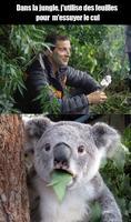 Dans la jungle, j'utilise des feuilles...