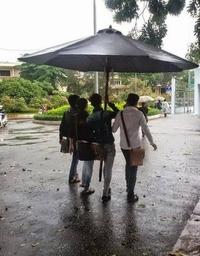 Un parasol suffit