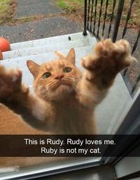 Ca, c'est Rudy