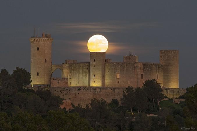 Super lune vanille s'il vous plait. Photo de Tomeu Mas
