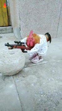 Elle est où la poulette ?