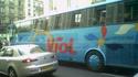 Bus Viol