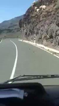 Attention, risque de chute de pierre sur la chaussée