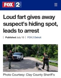 Une grosse flatulence permet de localiser où le suspect était caché, et permet son arrestation