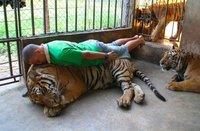 Planking level 100