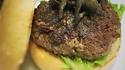 Tarantula Burger