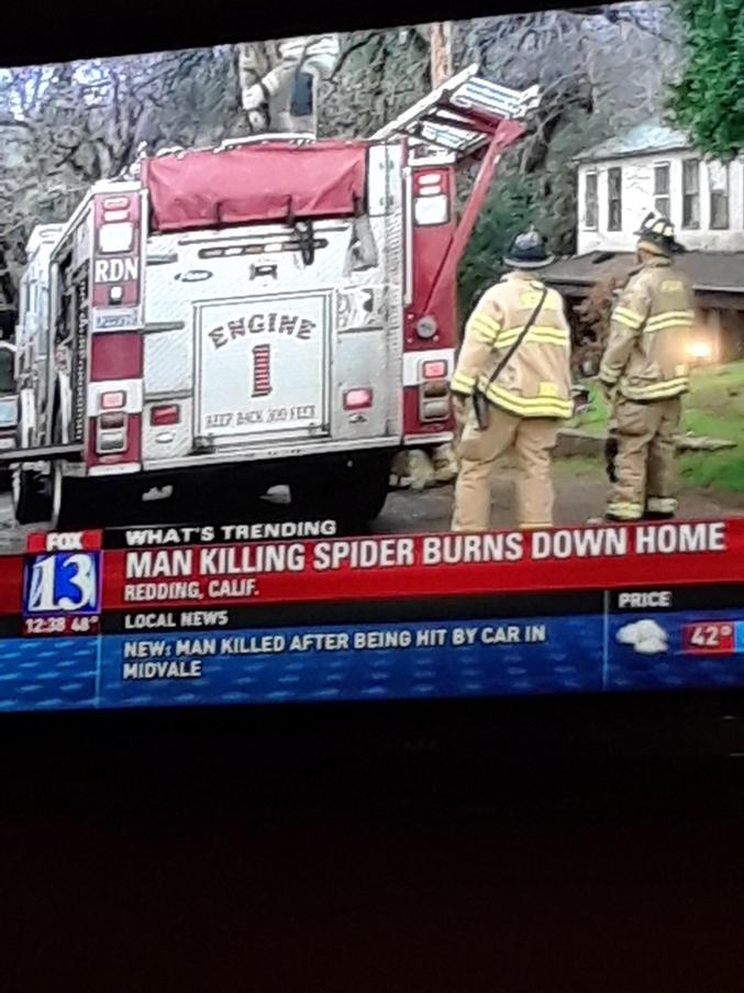 """""""Un homme met le feu à sa maison en voulant tuer une araignée""""."""