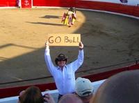 Go Bull