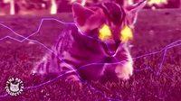 La puissance miraculeuse d'une chatte