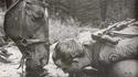 Un flingue [Kalach style], un cheval, une source ...