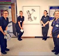 Cadeau de l'artiste Banksy pour l'hôpital de Southampton