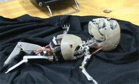 Nourisson Robot