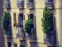 Cultiver son balcon
