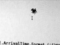 Une vraie araignée essaye de manger le curseur de sa souris sur son ordinateur