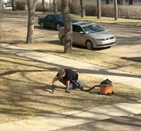 Quand tu veux nettoyer ta pelouse