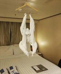 Un hôtel qu'il est bien