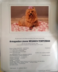 RIP, Armaguedon Léonne