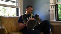 Pour ceux qui veulent lécher de la chatte