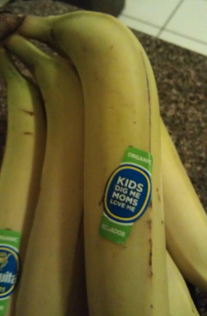 ... Parce qu'il a toujours une réserve de bananes !