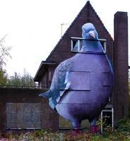 eine grosse Taube