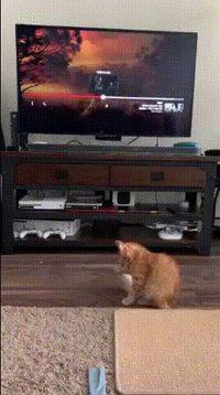 La télé devient de plus en plus réaliste