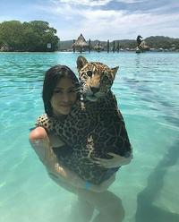 Le bain du jaguar
