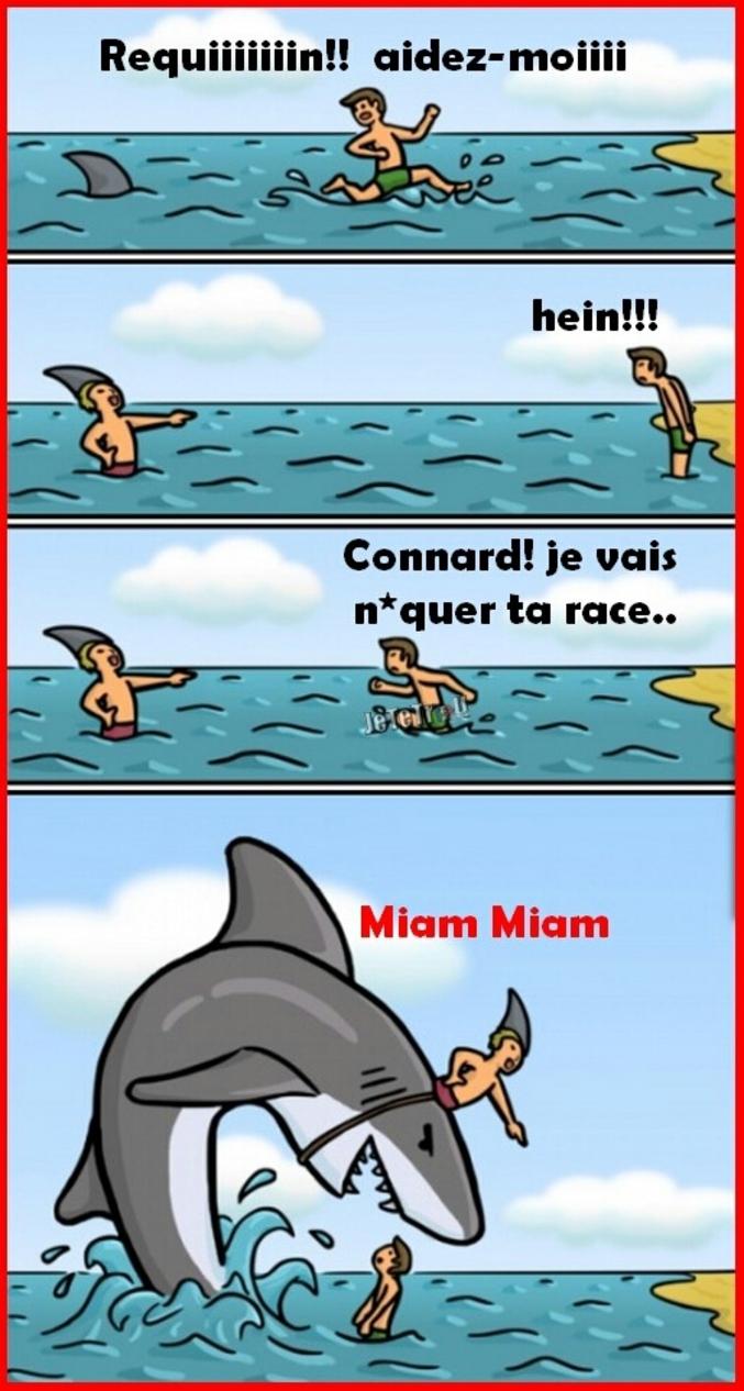 Quand on vous dit qu'ils sont pas si cons ces requins et bonnes vacances à tous !